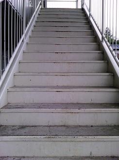 階段クリーン後